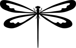 Insects-Dragonfly-3