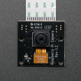 Raspberry Pi RPI NOIR Camera Board