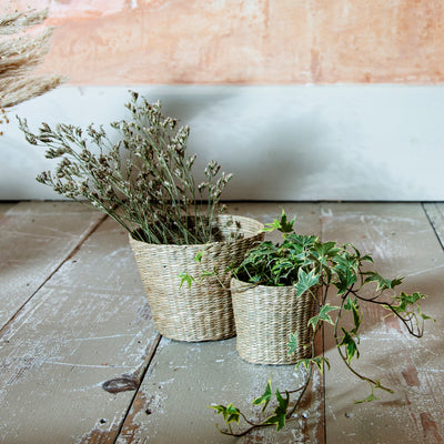Small Woven Seagrass Basket/Planter