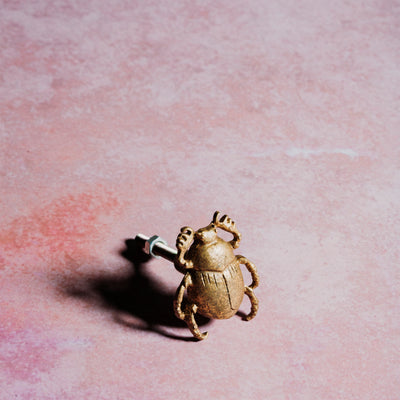Golden Beetle Drawer Knob