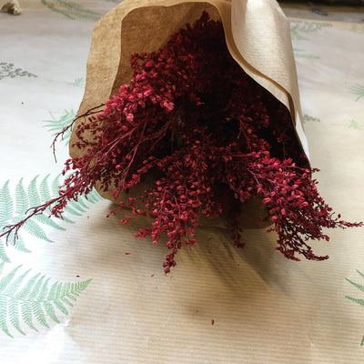 Dried Red Gyp