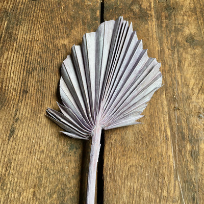 Dried Palm Spear - Vintage Lilac Stem