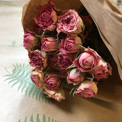 Dried Roses Pink