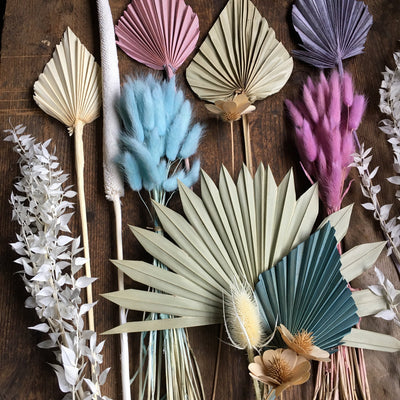 Dried Palm Spear - Teal Stem