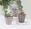 Set of 3 Geo Mini Planters