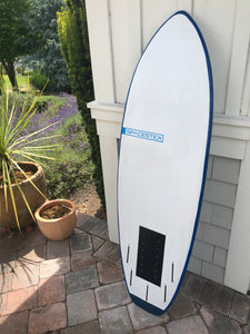 SPACEFISH   5'4 Convertible