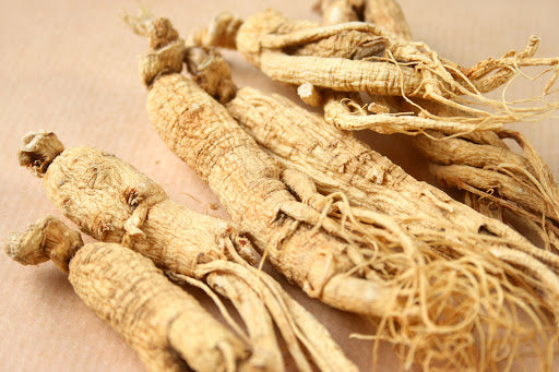 The Benefits of Asian Ginseng Root