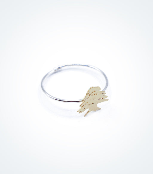 Yellow gold Cedar motif on white gold ring wire