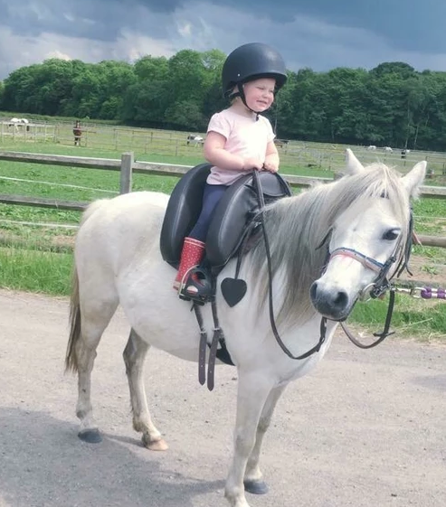How To Introduce Your Child to Horses and Horse Riding