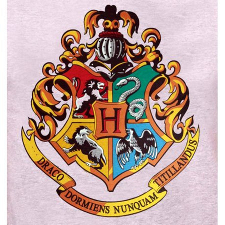 Tshirt EXCLU Harry Potter - Hogwarts Old School 2017 - MOVIESTORE