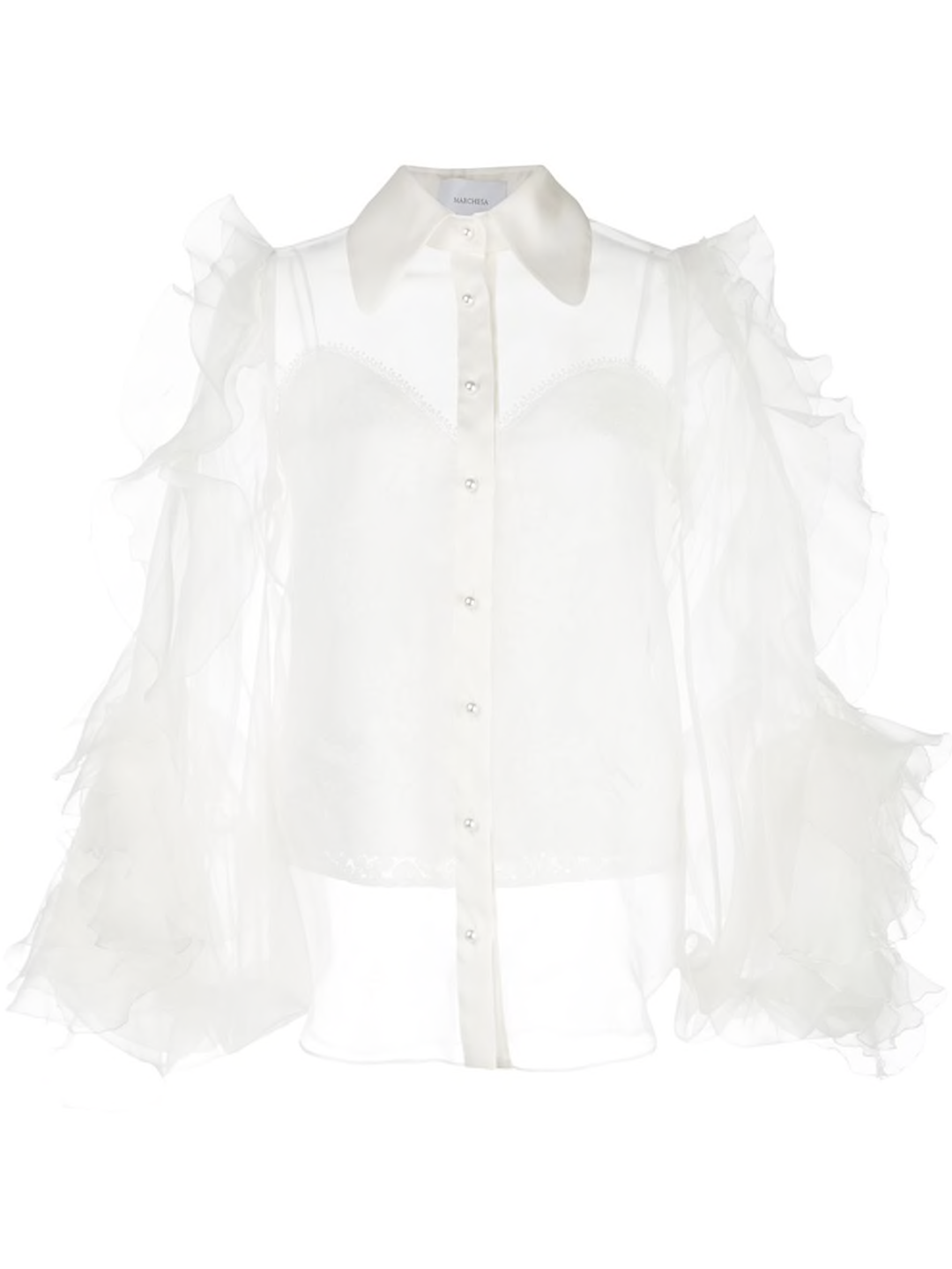 Sheer Ruffle Sleeve Blouse