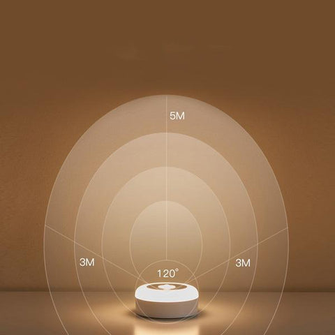 Image of Intelligent Induction Lamp