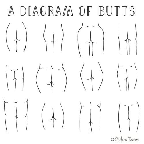 Diagram of Butts Illustrated Print