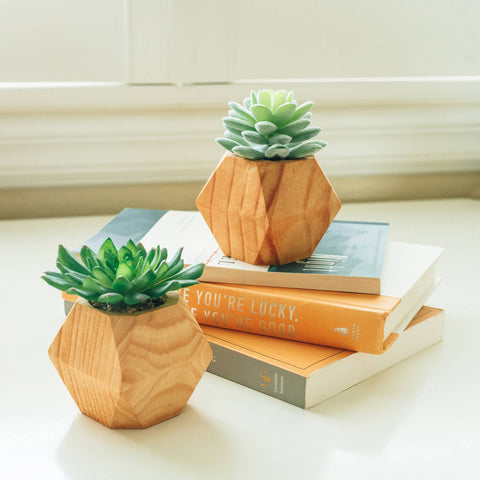 Artificial Succulent in wood Cube