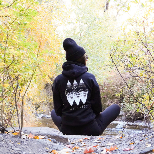 Diamond Skies (Back Print) Hoodie 18500 Lands Black L