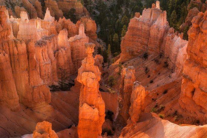 Guide To Bryce Canyon