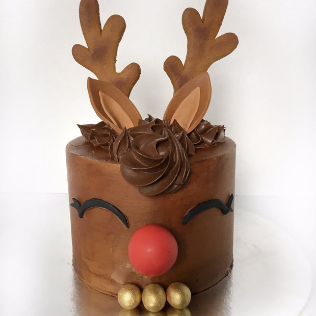 Reindeer Cake Workshop