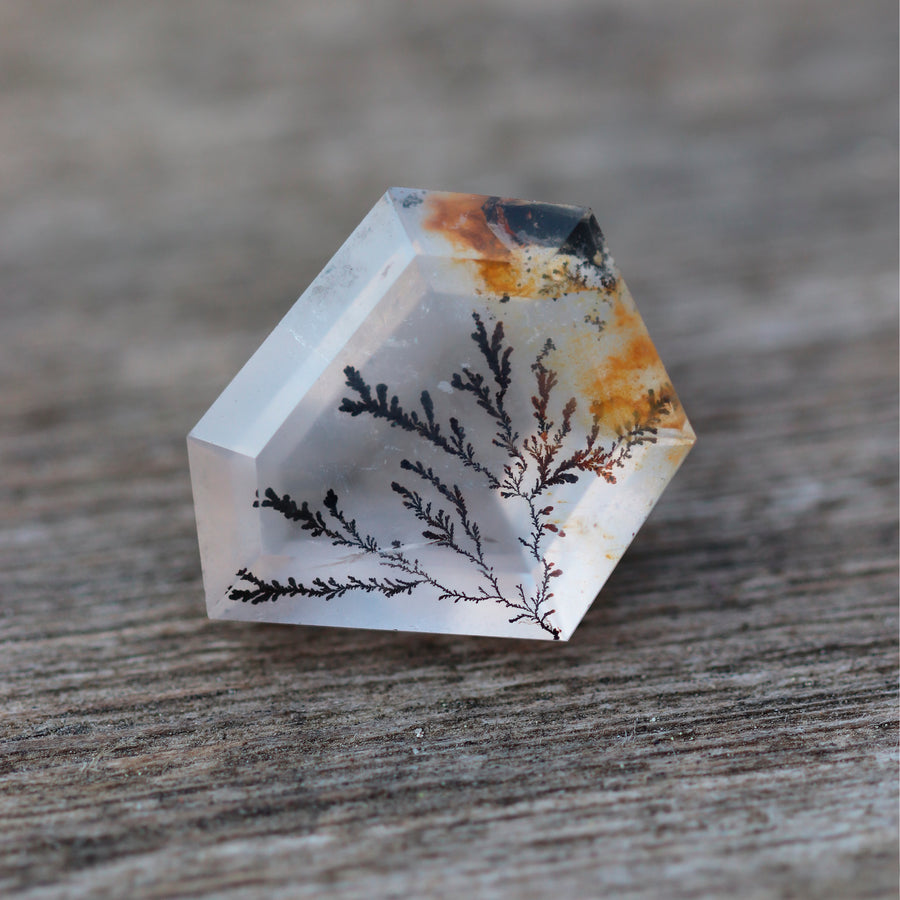 Dendritic Quartz 8
