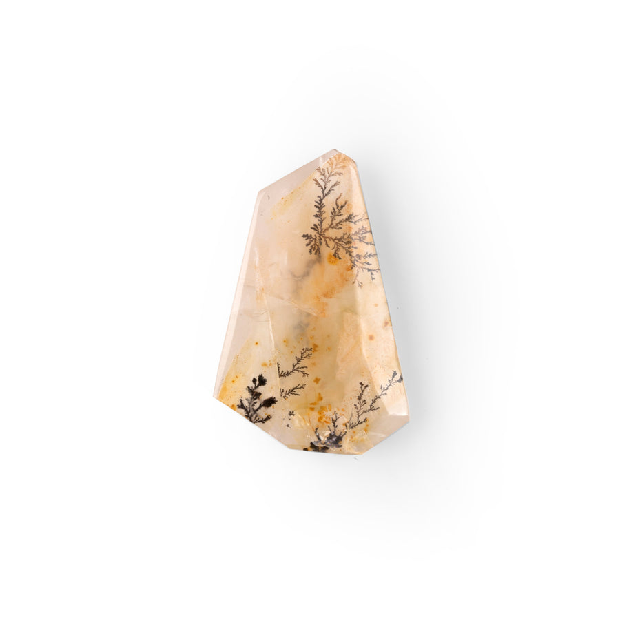 Dendritic Quartz 11