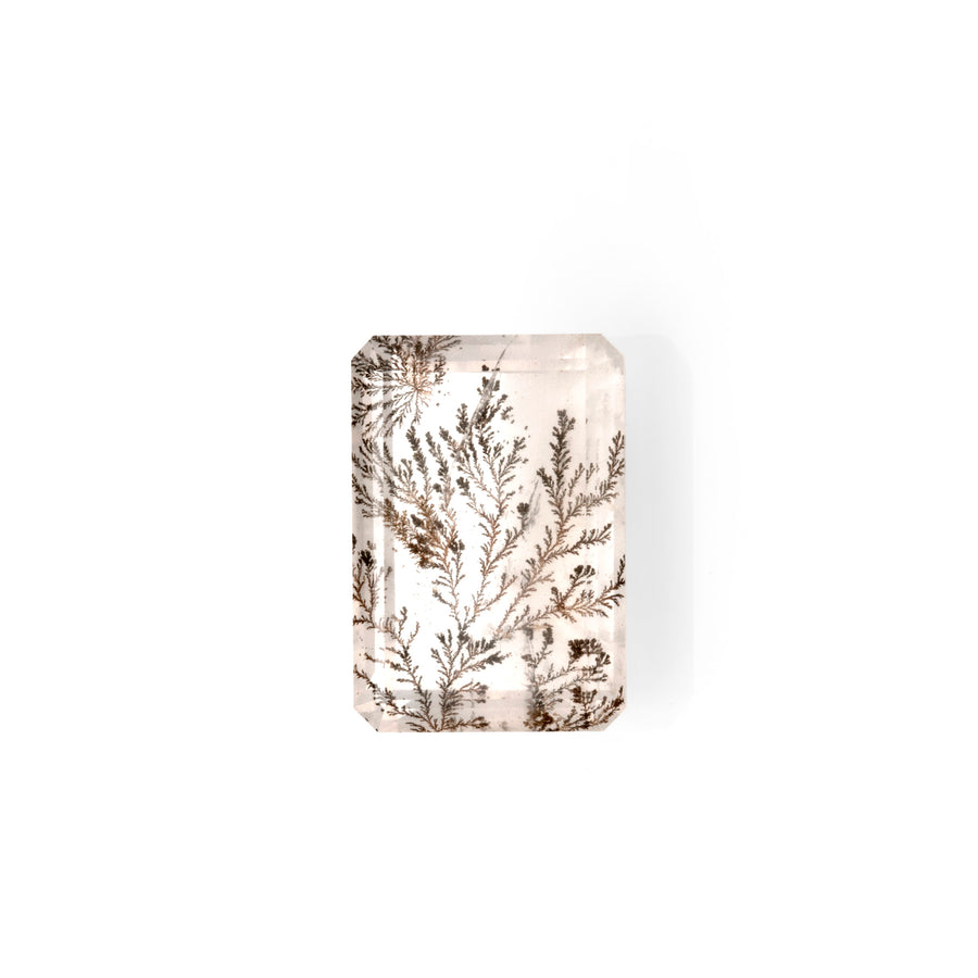 Dendritic Quartz 4