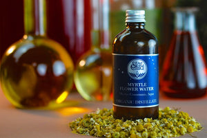 Myrtle Flower Water Organic By Star Child Glastonbury