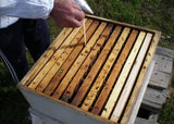 Varostop - Treatment for varroa bee . - beebox2u