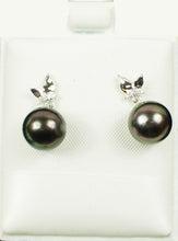 Load image into Gallery viewer, Tahitian black pearl earrings with diamond accent set in 14kt. white gold