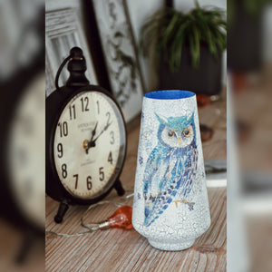Night Owl Upcycled Vase
