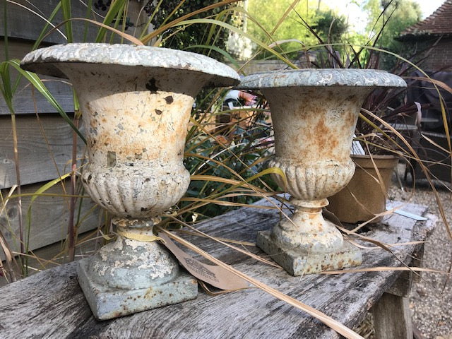 Pair of beautiful 19th Century Antique Urns