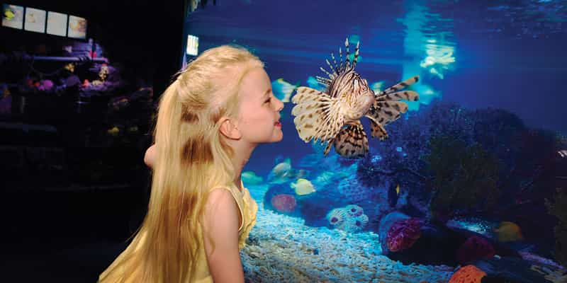 SEA LIFE® Aquarium