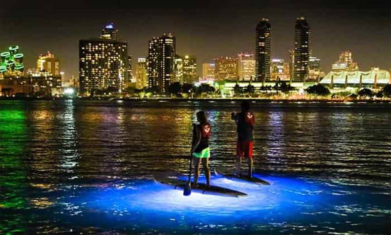 Night Time Illuminated Paddle Board in San Diego