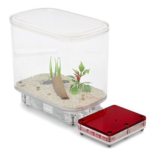 AntKit Acrylic Nest Bundle [Eden Edition]
