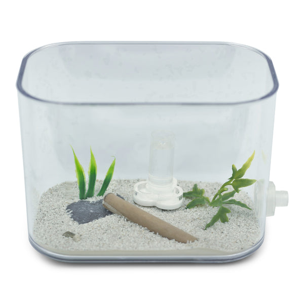 AntKit Water Feeder