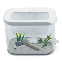 PS Arena 1000 B [Eden Edition] & AntKit Water Feeder