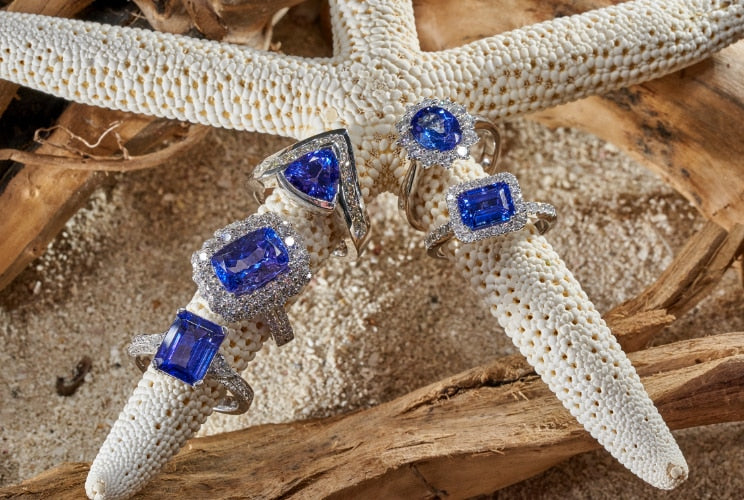 Tanzanite rings sitting on coral and driftwood