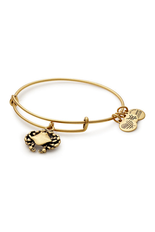 ALEX AND ANI Crab Charm Bangle