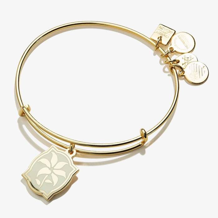 ALEX AND ANI Color Infusion Charm Bangle Bracelet - Shiny Gold Finish