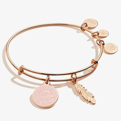 ALEX AND ANI Harry Potter™ 'Leviosa' & Feather Duo Charm Bangle
