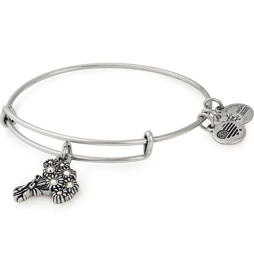 ALEX AND ANI I Pick You Charm Bangle Rafaelian Silver