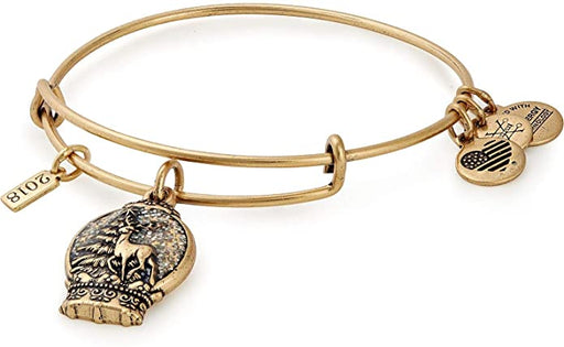 ALEX AND ANI Snow Globe Charm Bangle