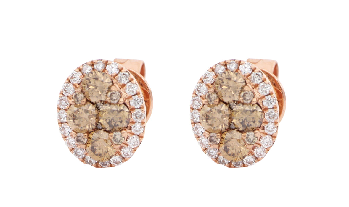 Brown Diamond Ladies Earrings (Brown Diamond 0.62 cts. White Diamond 0.2 cts.)