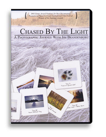 DVD: Chased by the Light