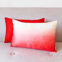Pink Dip Dye Cushion Red Silk Back Antique Obi