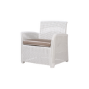 Tranquil Bar Club Chair