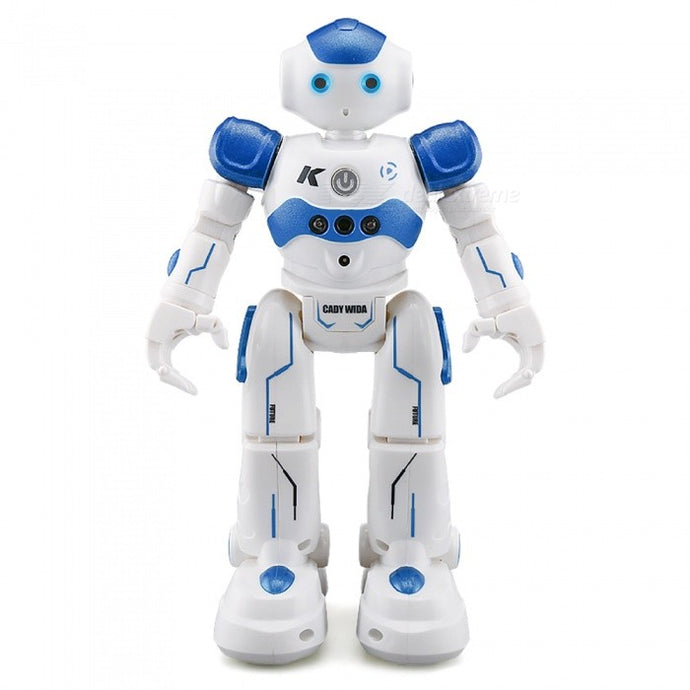 R2 CADY WIDA Intelligent RC Robot - Padin Trends