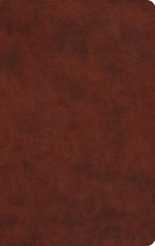 ESV Large Print Value Thinline Bible, Chestnut, Trutone