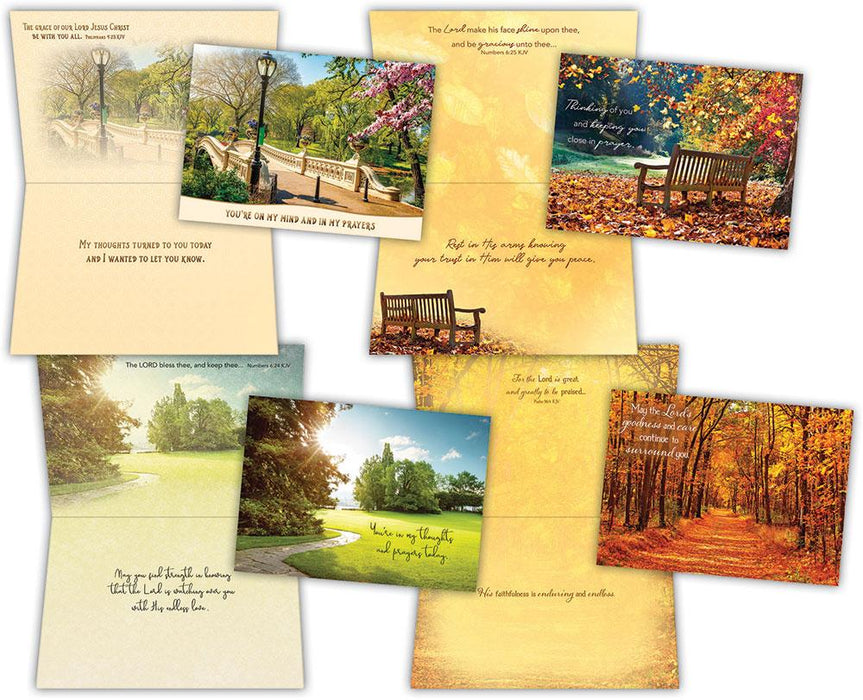 Boxed Cards - Pathways - Thinking of You