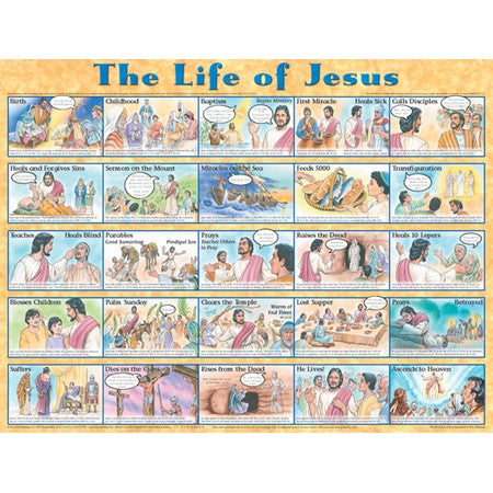 Life of Jesus - Laminated
