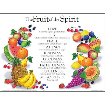 Fruit of the Spirit  Wall Chart  Laminated