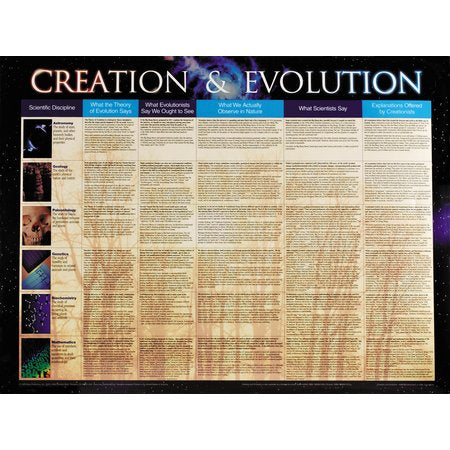 Creation & Evolution Wall Chart Laminated